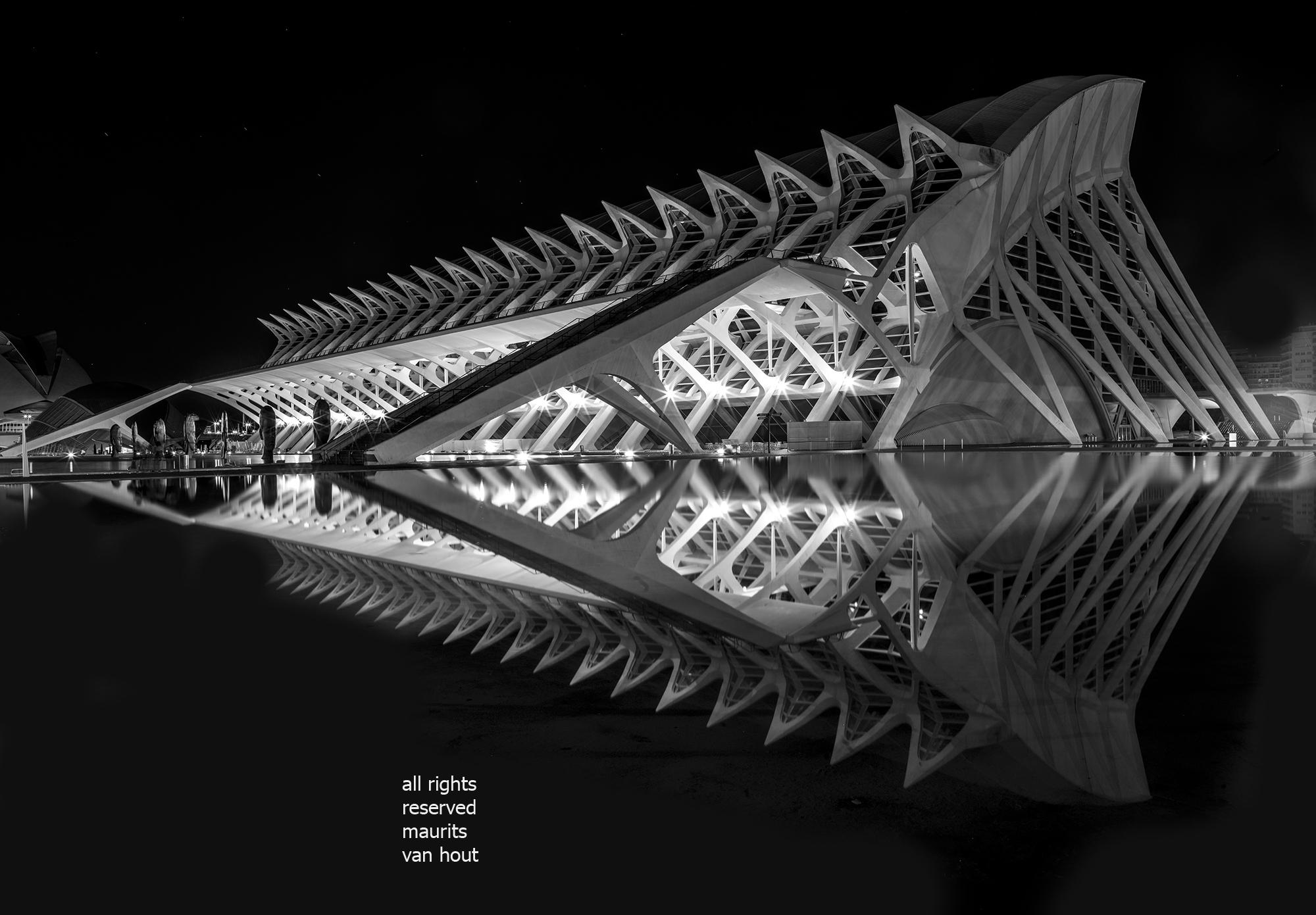 Architectuur van Santiago Calatrava in Valencia, door architectuurfotograaf Maurits van Hout uit Den Haag (Rijswijk)